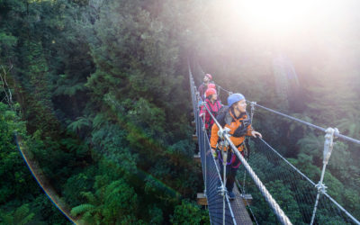 How One of New Zealand's Top Adventure Tours Focuses On Forest Conservation To Drive Traveler Bookings